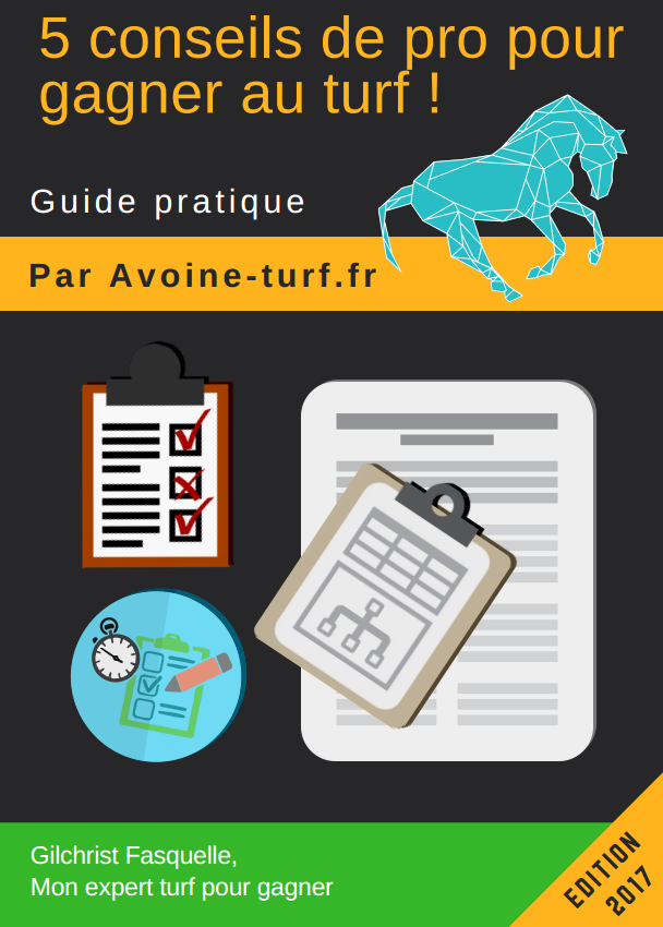 Couverture ebook turf